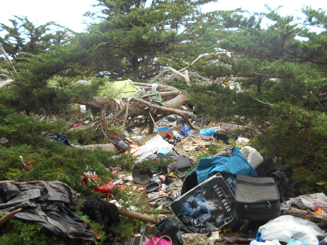 homeless-encampment-cleanup-by-steri-clean